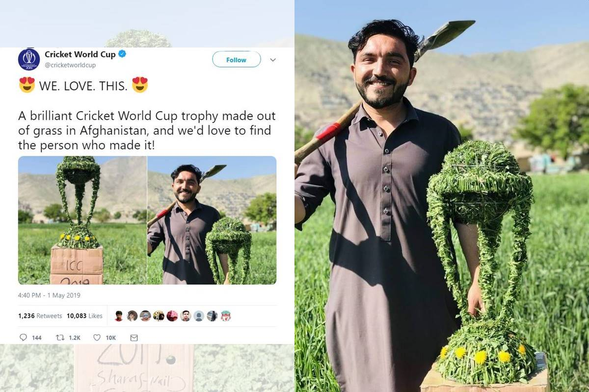 Afghan cricket fan, Cricket World Cup trophy, with grass, wins internet, Afghanistan cricket, ICC World Cup 2019