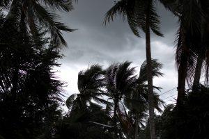NEET 2019 exam postponed in Odisha due to cyclone 'Fani'