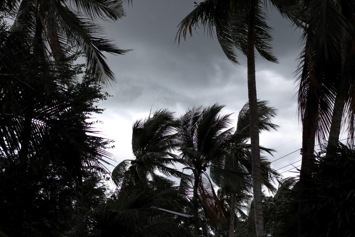 NEET 2019 exam, National Eligibility cum Entrance Test, cyclone Fani, Odisha, HRD Ministry