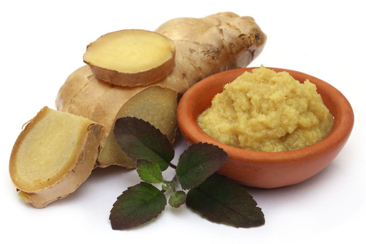 masala pastes, DIY, homemade, Green chilli paste, Tomato puree, Onion paste, Ginger paste, Garlic paste