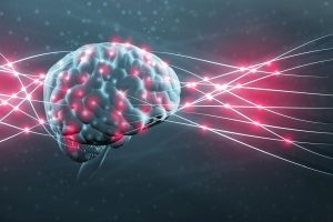 Resetting neurons in the brain