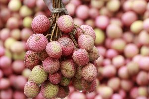Encephalitis scare: Litchi farmers distressed