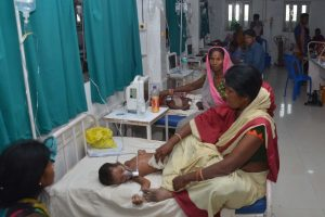 Wrong to blame litchis for deaths of children in Muzaffarpur, say experts
