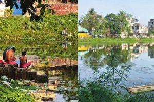 Restoring ecological balance