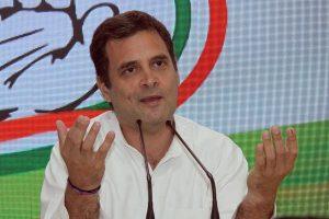 Rahul Gandhi lost as SP-BSP votes went to BJP in Amethi: Congress probe panel