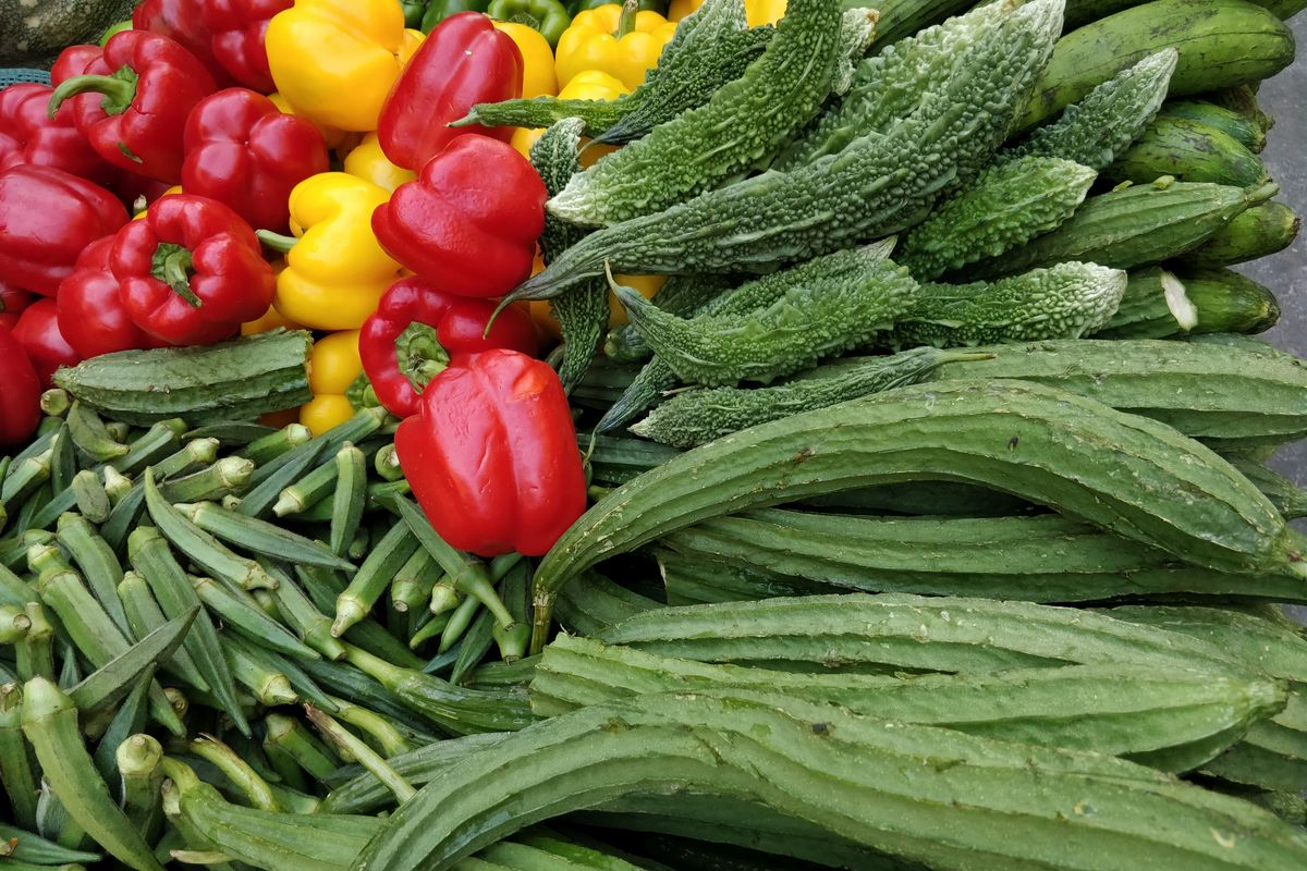 Curcurbitaceae family, summer veggies, zucchini, broccoli,Asian cooking, Digestible fibre, bowel movement, cholesterol, cardiovascular disease, hypoglycaemia, urinary tract infections, detoxifying, weight loss, immunity, probiotic bacteria