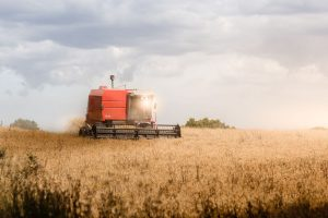 Near term outlook for rural economy looks grim: Report
