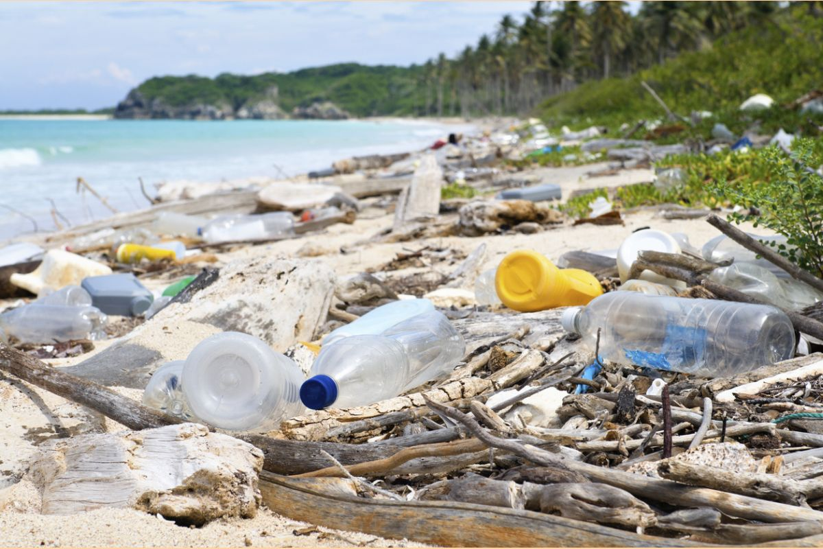 The Group of 20 major economies said they agreed a deal to reduce plastic waste that is choking the seas at a meeting in Japan on Sunday.