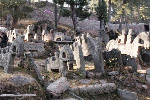 Mysterious stone horses decaying in Pir Panjal area of Jammu