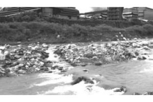 SC PIL against pollution due to Bhutan industry