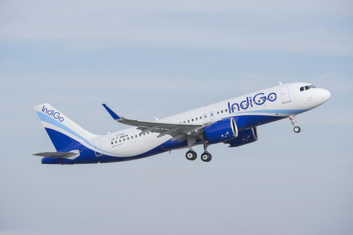 IndiGo, InterGlobe Aviation Ltd, Market share, Q1, Net profit