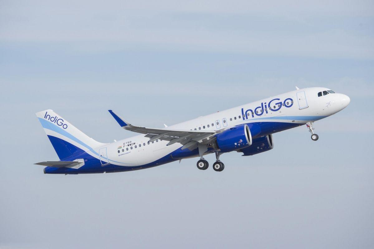 IndiGO, InterGlobe Aviation, Rakesh Gangwal, Rahul Bhatia, M. Damodaran