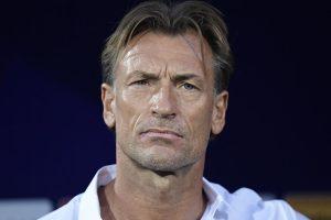 Saudi Arabia announce Herve Renard as new head coach