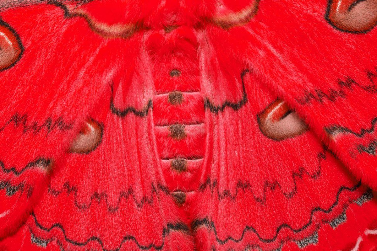 Raw silk production, Smriti Irani, Lok Sabha, Union Textiles Minister