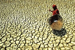 Drought-like situation in Hooghly block affects villagers, farmers