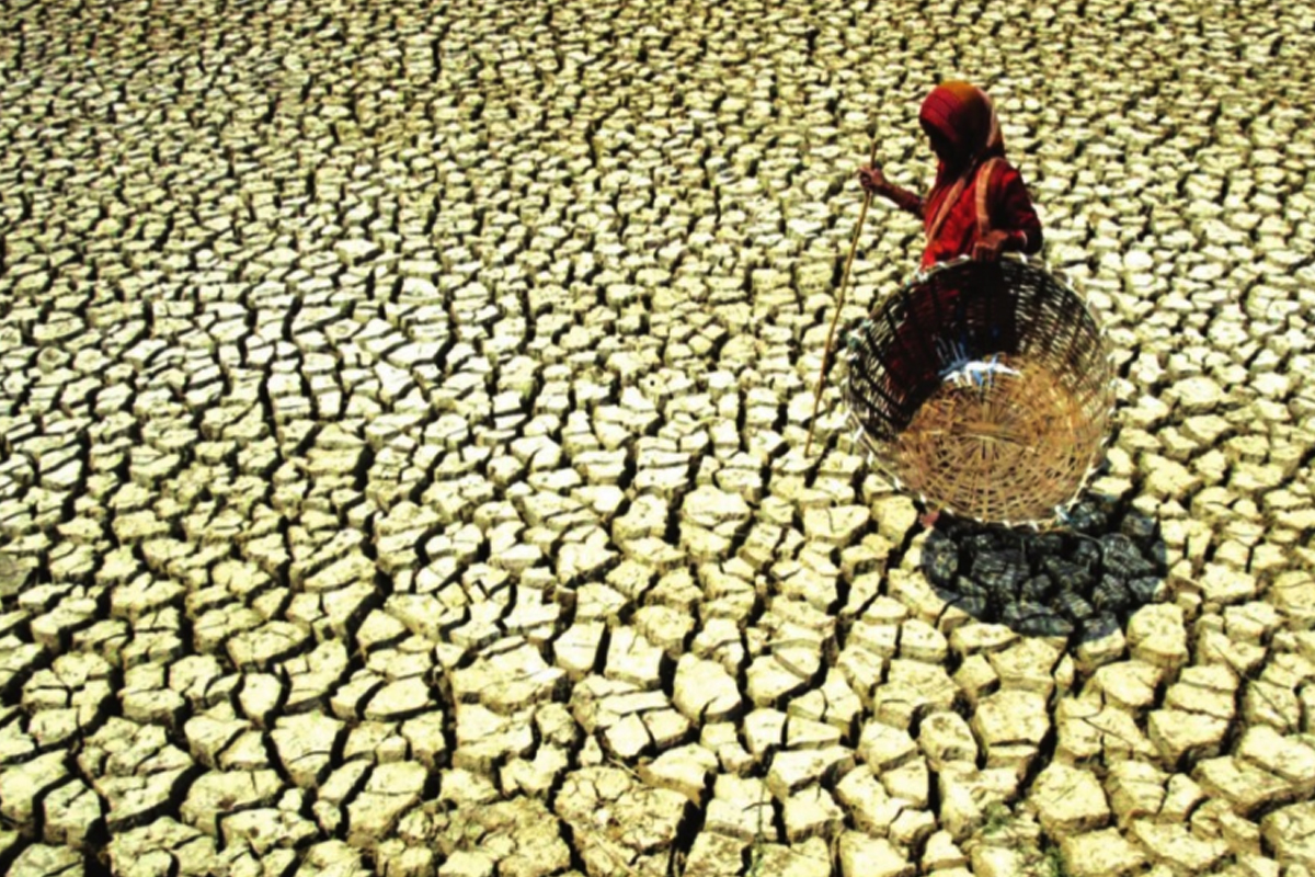Environmental needs dictate need for South Asian peace