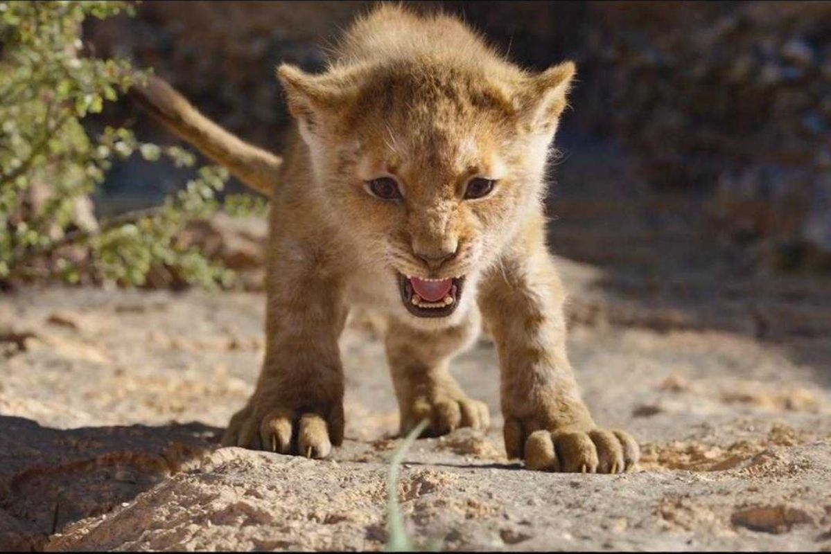 The Lion King roars at the Indian box office