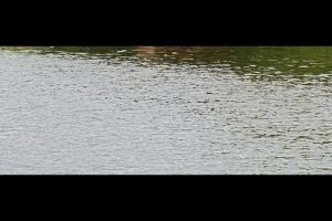 BMC withdraws 10 pc water cut as stock in seven lakes rises