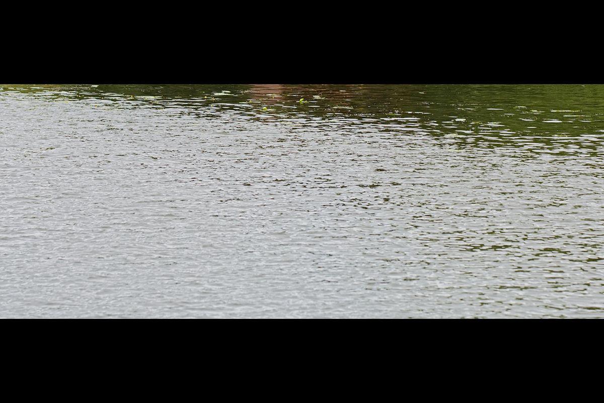 BMC, Water cut, Stock, Lakes