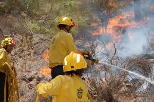 4,000 people evacuated after wildfire grips Gran Canaria islands