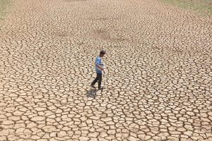 With 40% rainfall deficit Jharkhand stares at drought