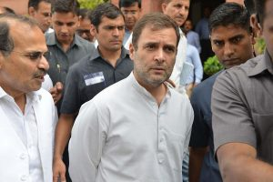 Rahul Gandhi discusses night traffic ban on forest stretch with Kerala CM
