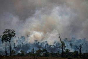 Brazil's burning ban takes effect as Amazon fires rage