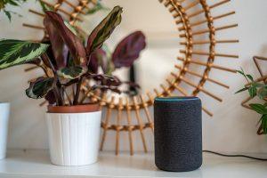 Amazon Alexa offering over 30,000 skills in India