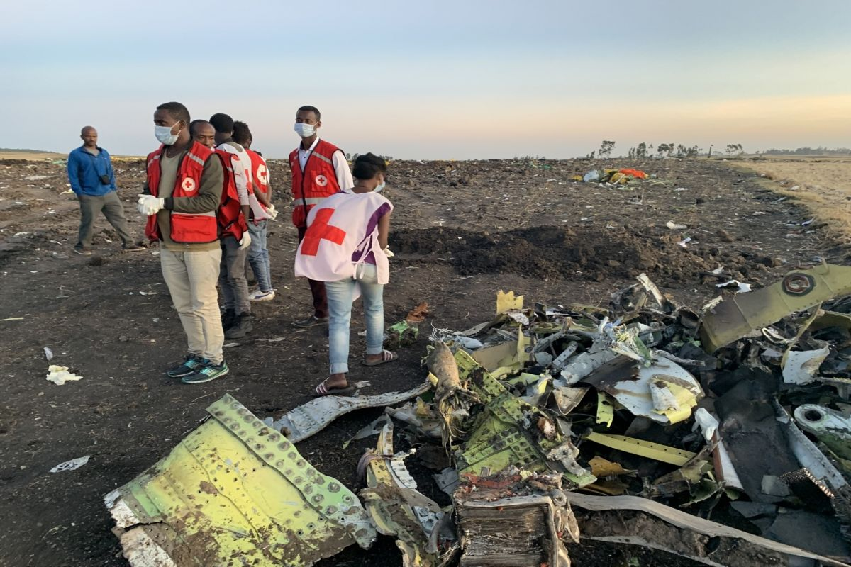 All Ethiopian Airlines crash victims identified: Interpol