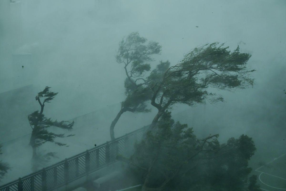 Storm Dorian