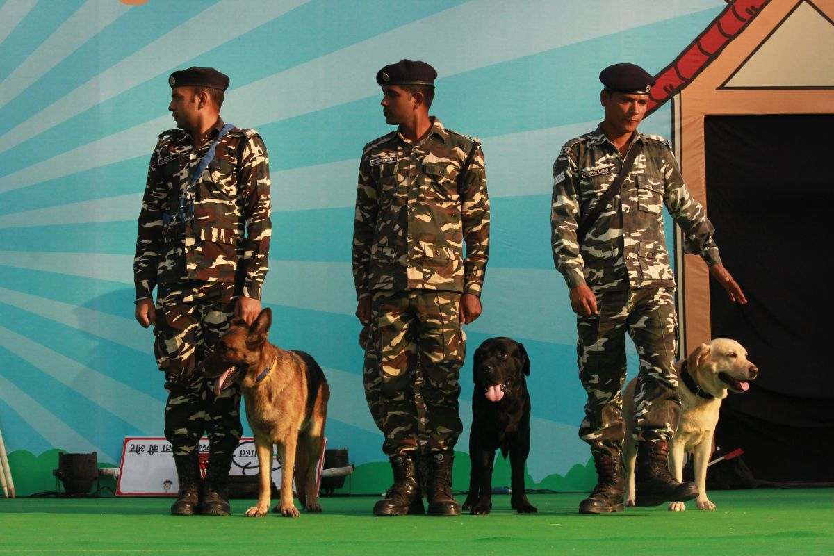 India's biggest pet festival, Pet Fed 2019, Delhi to commence from Dec 28