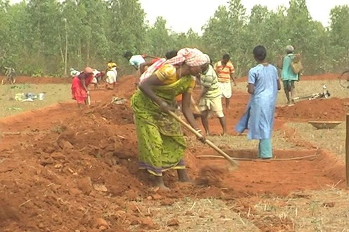 Punjab to clear pending MGNREGA wages