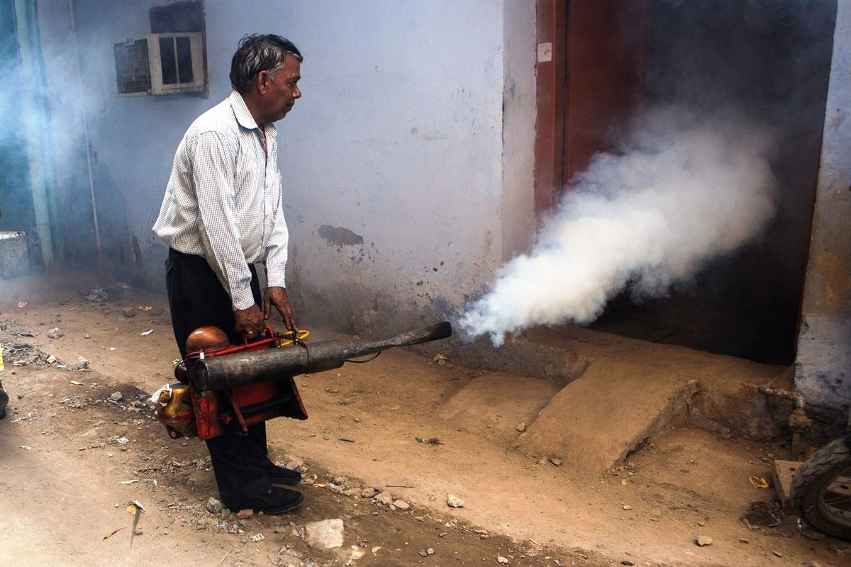 KMC wages war against dengue, malaria