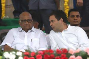 Action by 'vindictive govt' reeks of 'political opportunism': Rahul Gandhi on Sharad Pawar