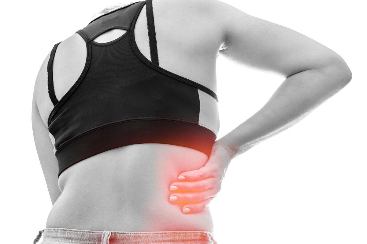 Dieting, Exercise, Bone health, Bone marrow