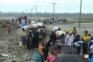Rohingya villages in Myanmar destroyed: Report