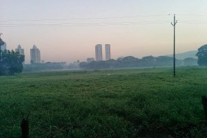 Bombay High Court dismisses Aarey petitions, declares, 'it's not a forest'