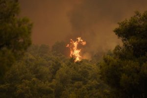 California continues to battle wildfires