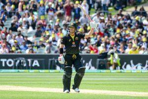 It means a lot to contribute to team: David Warner