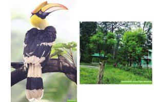 Creating environmental awareness