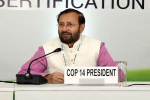 Javadekar refuses to comment after SC halts felling of trees in Aarey Colony