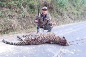 Man-eating leopard eliminated in special operation, villagers now fearful of jungle cat's female partner
