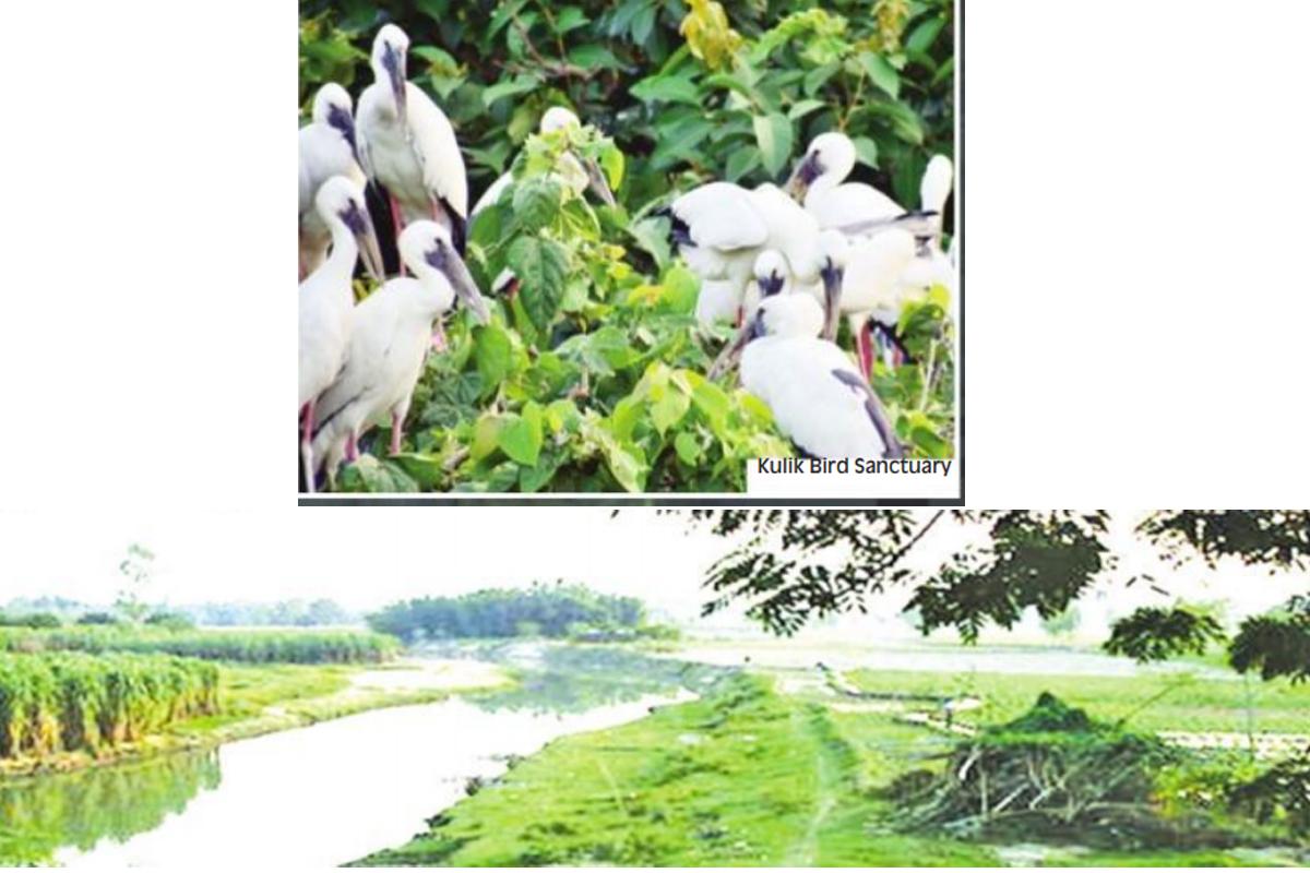Kulik Bachao, River, Kulik Bird Sanctuary, Thakurgaon, Kamlabari Municipality, Raigunj
