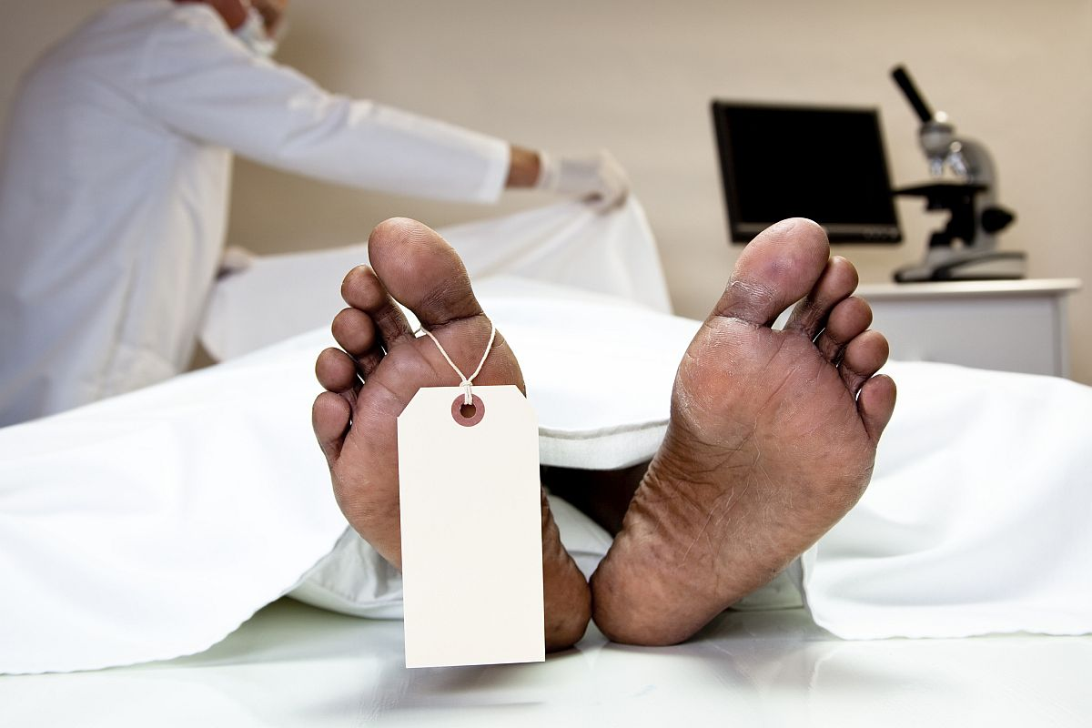 Ants crawl on dead man's eyes in MP hospital, 5 doctors suspended; CM orders probe