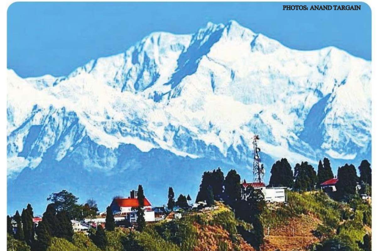 Darjeeling, Earth, Albert Einstein, forests, factories, Globalisation, climate change