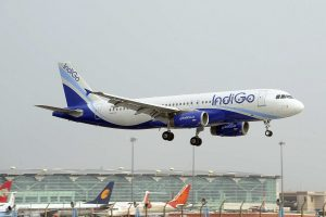 IndiGo shares rises after air carrier signs one-way codeshare agreement with Qatar Airways