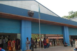 Alipore Zoo takes precaution to fight bird flu outbreak