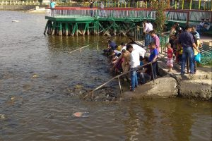 Mansar, Surinsar lakes to be developed as tourist destinations