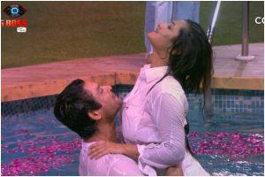 Bigg Boss 13, Day 56, Nov 25: Sidharth, Rashami recreate their 'Dil Se Dil Tak' chemistry