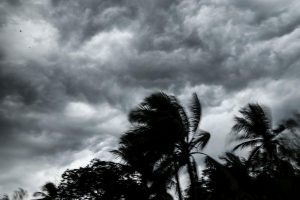 Cyclone Bulbul wreaks havock in Odisha coast